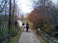 Horsback riding excursion