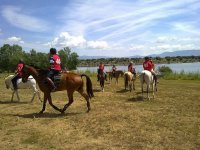 Horseback riding activities