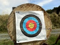 Target after thrown arrows