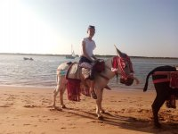 Riding a donkey in Huelva