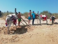 Posing with the donkeys of Huelva