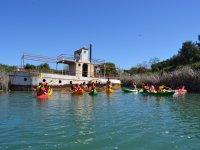 Rutas en kayak por aguas gaditanas