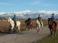team building on horseback