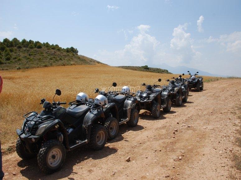 Excursiones en quad para grupos Cascante