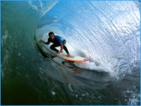 Surf in its purest state