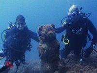 En las profundidades submarinas