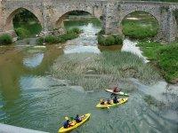 Canoas junto al puente