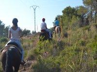 Horeback riding excursion Les Rodanes