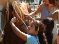 Horseback riding excursions