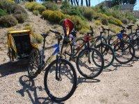 Alquiler de mountain bike jornada completa, Tudela