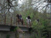 Rutas a caballo en Sanabria