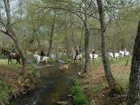 Excursiones a caballo en Sanabria
