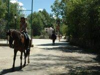 Excursiones a caballo para todos los tipos