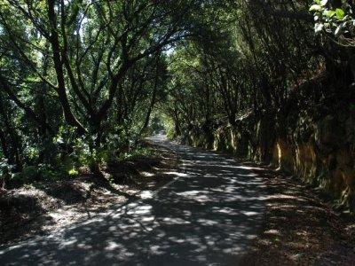 Albergue Montes de Anaga BTT