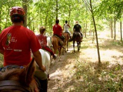 Paseo a caballo, 3h, Vora Ter, con comida incluida
