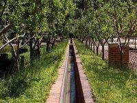 探索皇宫花园Aranjueza