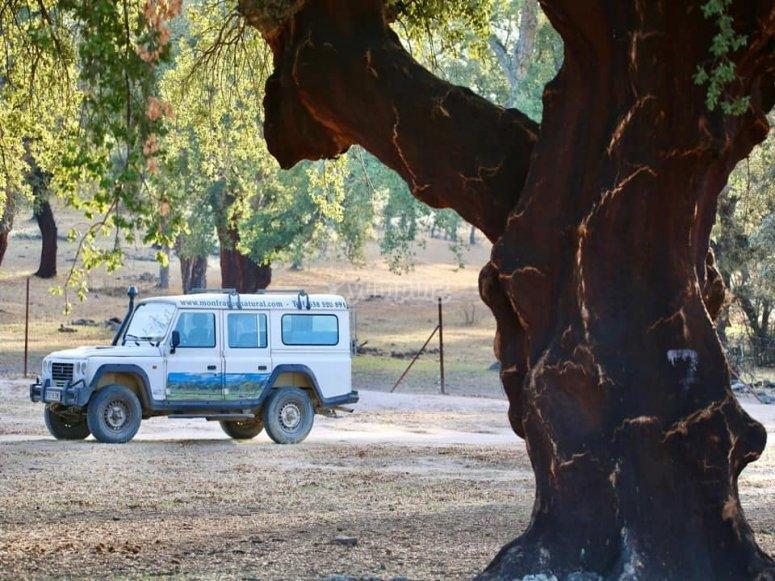 Todoterreno para recorrer el Parque Natural de Monfragüe