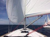 展开的帆--999-帆船参加比赛