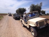 Ruta en coche por caminos rurales