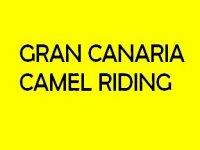 Gran Canaria Camel Riding