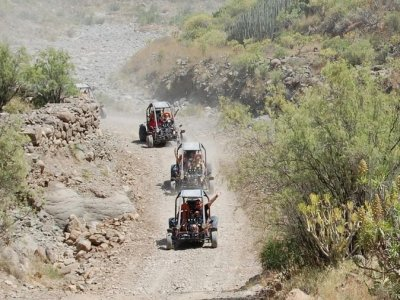 Gran Canaria Excursions Buggies