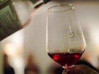 Cata nuestros vinos