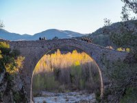Puente en la Garrotxa