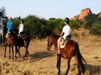 在Ocero的马匹