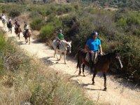 Rutas a caballo con guia
