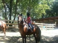 Ninos aprendiendo a montar a caballo