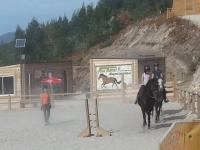 Iniciate en la equitacion con nuestros profesores