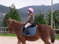 骑马课程为儿童