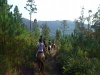 Horseback riding excursions in Pontevedra