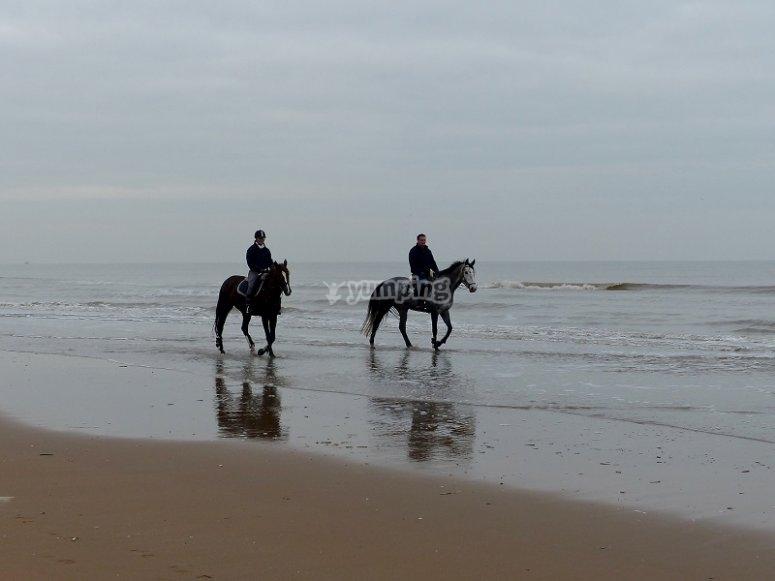 Ruta a caballo por la playa