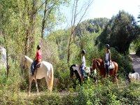 Horse riding in Montserrat