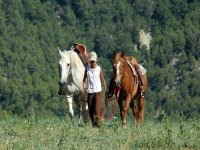 Horse riding in Catalonia