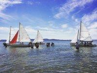 Playing sailing sports