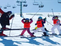 Clases de esqui durante 6 dias