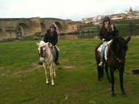 Ruta a caballo en el curso de río Tajo 1h 30 min