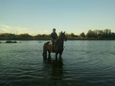 2h. Horse Riding Tour next to the Tajo River