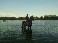 2 h. de ruta a caballo junto al río Tajo