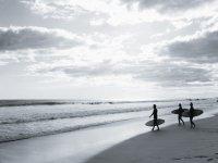 Surf camps