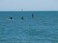 Paddle surfing routes