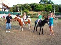 Burritos y ponis Evecan Safari Aventura