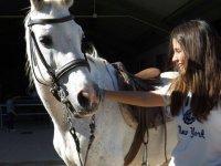 Acariciando al caballo en la hipica toledana