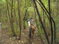Narrow path on horseback