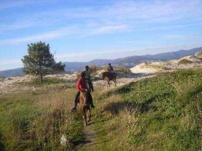 Natur Activa Rutas a Caballo