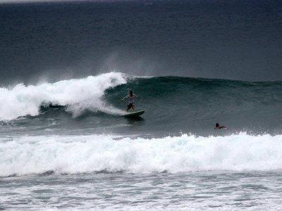Aussie Surf Club  Surf