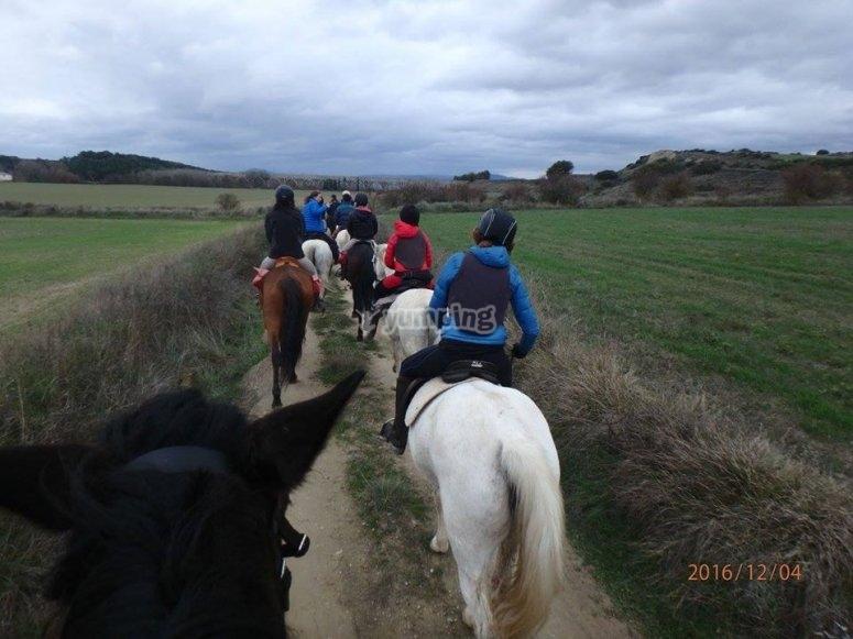 A beautiful experience on horseback