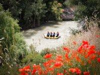 Rafting en la ribera con amapolas